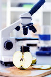 Laboratory microscope. Chemical Laboratory of the Food supply / control the amount of nitrates, herbicides and pesticides Stock Image