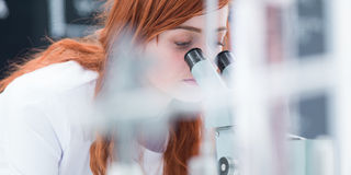Laboratory microscope analysis Royalty Free Stock Photos