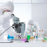 Laboratory molecular analysis Stock Images