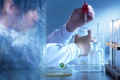 Laboratory Personnel Royalty Free Stock Images