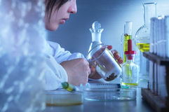 Laboratory Personnel royalty free stock photos