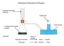 Laboratory preparation of oxygen Stock Image