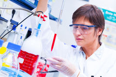 Laboratory research  development of cell therapy. Laboratory research and development of cell therapy Stock Images