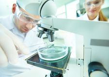 Laboratory research Royalty Free Stock Photos