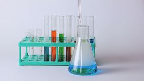 Laboratory flasks and beakers on the table. Laboratory research. Scientific glassware for chemical stock video