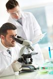 Laboratory research Stock Image