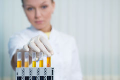 Laboratory of researches Stock Images
