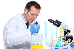 Laboratory scientist using a multi channel pipette Stock Image