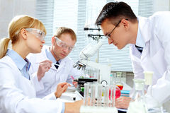 Laboratory study Stock Photo