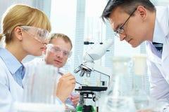 Laboratory study royalty free stock image