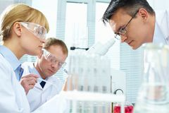 Laboratory study Stock Images