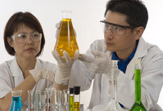 Laboratory team Royalty Free Stock Photos