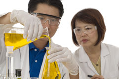 Laboratory team Royalty Free Stock Photography