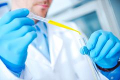 Laboratory Technician at Work Stock Photos