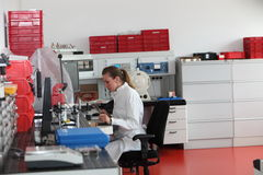 Laboratory technician working in the lab Royalty Free Stock Image