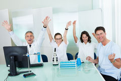 Laboratory technicians conducting tests. Laboratory technicians or medical technologists sitting around a lab bench conducting tests on a rack of test tubes Stock Image