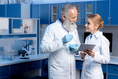 Laboratory technicians in lab coats talking with digital tablet and flask. At laboratory royalty free stock photography