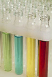 Laboratory test tubes Royalty Free Stock Image
