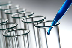 Free Laboratory Test Tubes In Science Research Lab Royalty Free Stock Photography - 20415097