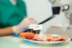 Laboratory testing of cured meat products Royalty Free Stock Photo