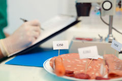 Laboratory testing of cured meat products Royalty Free Stock Images