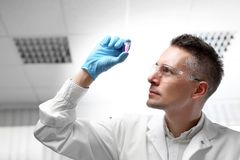 Laboratory tests and diagnostics. The lab technician is watching the specimen in the test tube stock photos