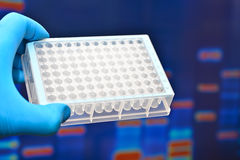 Laboratory tests in medicine. Stock Photos