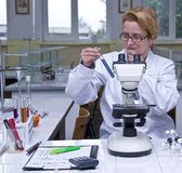 Laboratory work Stock Photography