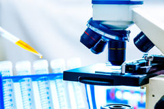Laboratory work place. With microscope,  test tube and pipettes Stock Photos