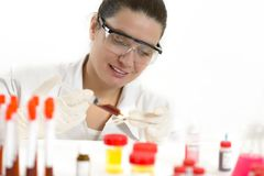 Laboratory Work Stock Image