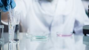 Laboratory worker checking viscosity and kinetic abilities of substance, science. Stock video Royalty Free Stock Images
