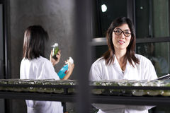 Laboratory working Stock Photos