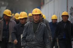 Laborer, Construction Worker, Blue Collar Worker, Hard Hat royalty free stock photo