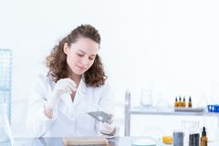 Laborer woman taking a sample. Of a material for tests in the laboratory Stock Photos