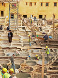 Laborers working on rehab in the Chouwara leather tannery in the Fez El Bali Medina. Stock Photo