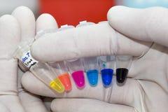 Laborgefäße mit mehrfarbigen Flüssigkeiten lizenzfreies stockbild