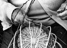 Laborious hands of elder craftsmen create a wicker basket Stock Photo