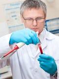 Labormann-Blutprüfung Lizenzfreies Stockfoto