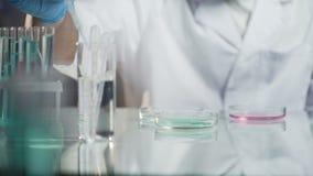 Laborwissenschaftler-Leittests durch das Hinzufügen des Tropfens des Reagens Mischung stock video