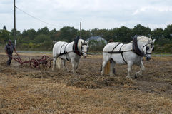 Labour Day in Sable sur Sarthe, France ,October 4, 2014 Royalty Free Stock Photography
