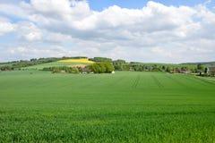 Labourage, blé et colza de la terre agricole contre le ciel bleu Images stock