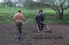Labourage du champ avec des chevaux Photos stock