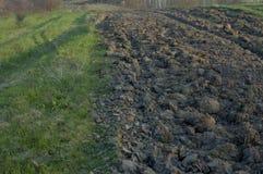 Labourage et herbe verte Image libre de droits