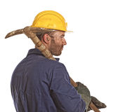 Labourer portrait Royalty Free Stock Photos