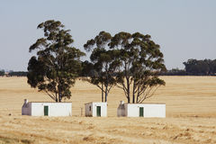 Labourer,s Cottages. Labourer's cottages shaded by trees in the middle of a harvested wheatfield Stock Photography