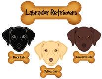 Labradorów aportery, czerń, czekolada, Żółci Labs, Psiej kości fundy ilustracji