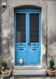 Labrador blanco con la cabeza que se pega fuera de catflap en puerta de madera azul Fotografía de archivo
