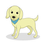 Labrador, cute dog. Cute white puppy. Isolated on white background. Vector illustration Stock Image