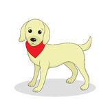 Labrador, cute dog. Cute white puppy. Isolated on white background. Vector illustration Stock Photos