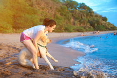 Labrador dog afraid of swimming. Girl take dog into ocean water stock image